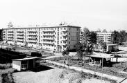 1975 Юбилейный д2,3 маг Кедр, двор 1 сада
